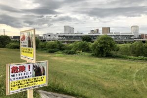 旭川駅対岸の河川敷などにクマの痕跡 出没情報相次ぎ公園閉鎖も
